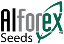 Alforex Seeds, Alfalfa and Forage Experts