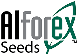 Alforex Seeds, Alfalfa and Forage Experts