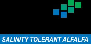 salinity tolerant Hi-Salt alfalfa seed