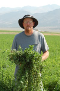 Alforex Seeds Hi-Gest alfalfa grower, Gallagher Farms, Eureka, NV