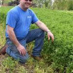 Alforex Seeds Hi-Gest 360 alfalfa grower Terry Spindler, Spindler Farms, WI