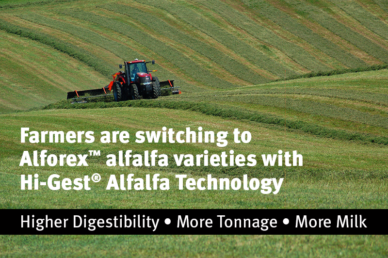 Hi-Gest Alfalfa Technology higher digestibility, more tonnage, more milk