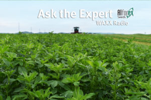 Ask the Alfalfa Expert, Dr. Don Miller Alforex Seeds
