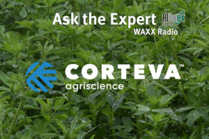 Ask the Alfalfa Expert, Dr. Don Miller Alforex Seeds