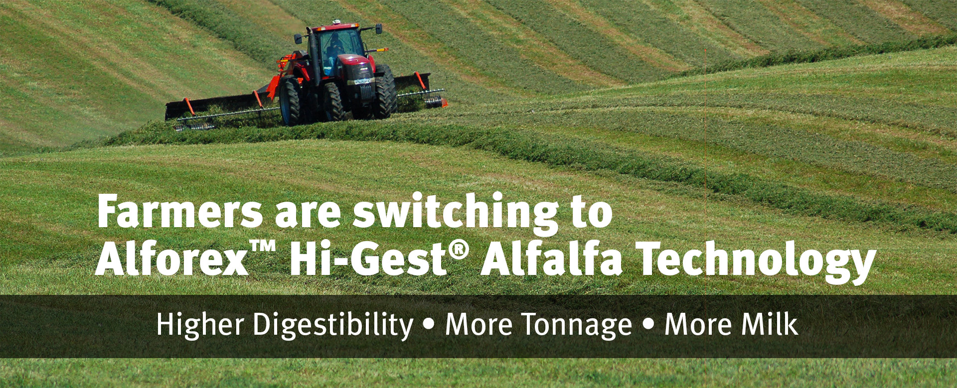 Switch to Alforex Alfalfa with Hi-Gest Alfalfa Technology