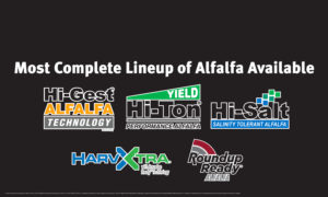 Most Complete lineup of alfalfa seed available on the market