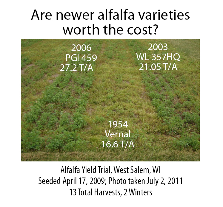 New Alfalfa Genetics Worth the Extra Cost