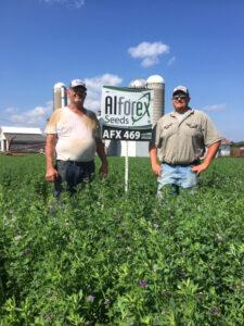 Alforex Seeds Hi-Ton alfalfa grower Donald Ihrke, Altura MN