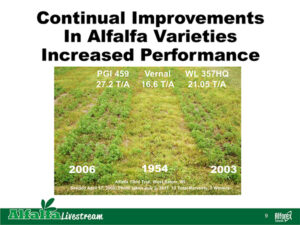 Improved Alfalfa varieties equal better performance