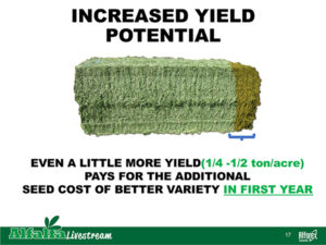 increased yield potential of better alfalfa varieties pays for itself