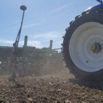 Late Summer Planting of Alfalfa